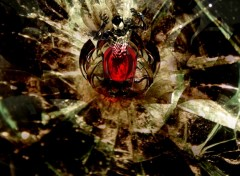 Fonds d'écran Comics et BDs Spider Broken Glass