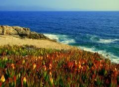 Fonds d'écran Voyages : Europe magnifique paysage