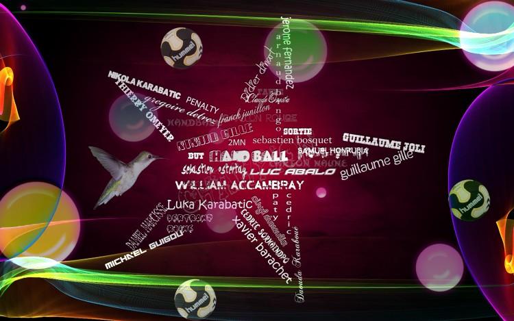 Wallpapers Sports - Leisures Handball Nikola KARABATIC EXPERTS HANDBALL
