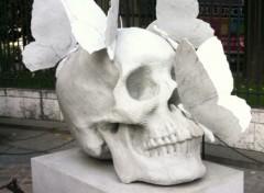 Fonds d'écran Voyages : Europe Tête de mort