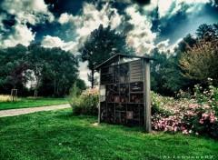 Fonds d'écran Nature la petite cabane