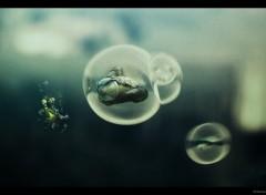 Fonds d'écran Art - Numérique Underwater