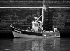 Fonds d'écran Bateaux Bâteau de pêcheur à Quiberon