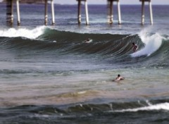 Wallpapers Trips : North America surf