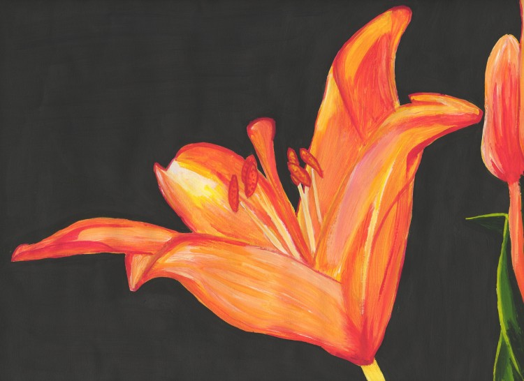 Wallpapers Art - Painting Flowers Fleur de Lys