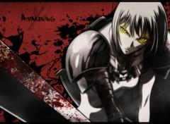 Fonds d'écran Manga Awakening.
