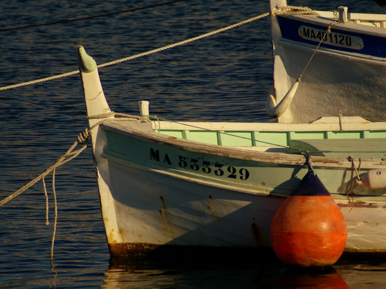 Wallpapers Boats Fishing Boats au port