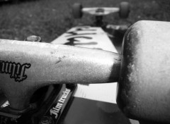 Wallpapers Sports - Leisures my skateboard