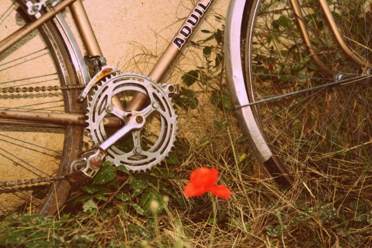 Fonds d'écran Transports divers Vélos vieux vélo