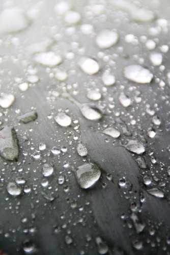 Fonds d'écran Nature Eau - Gouttes, rosée Goutte de pluie