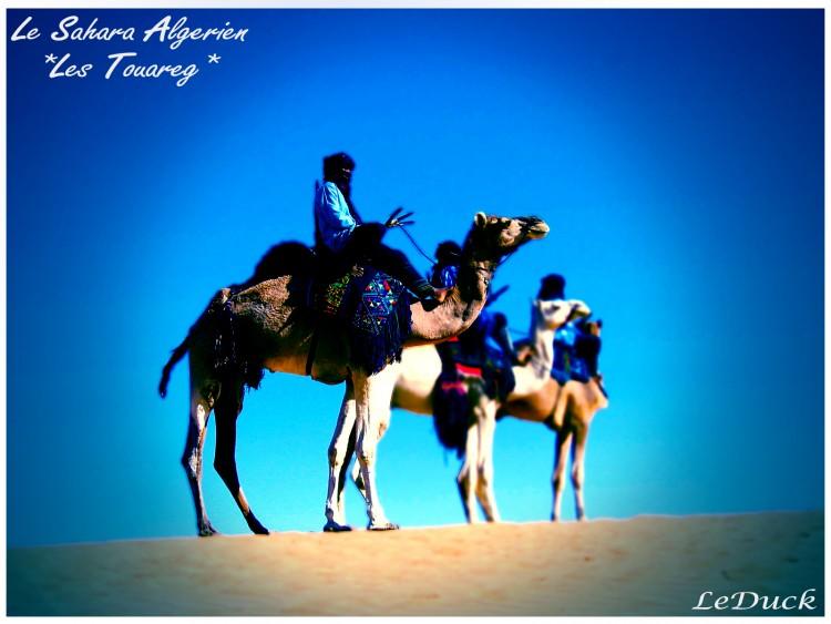 Wallpapers Trips : Africa Algeria Touareg