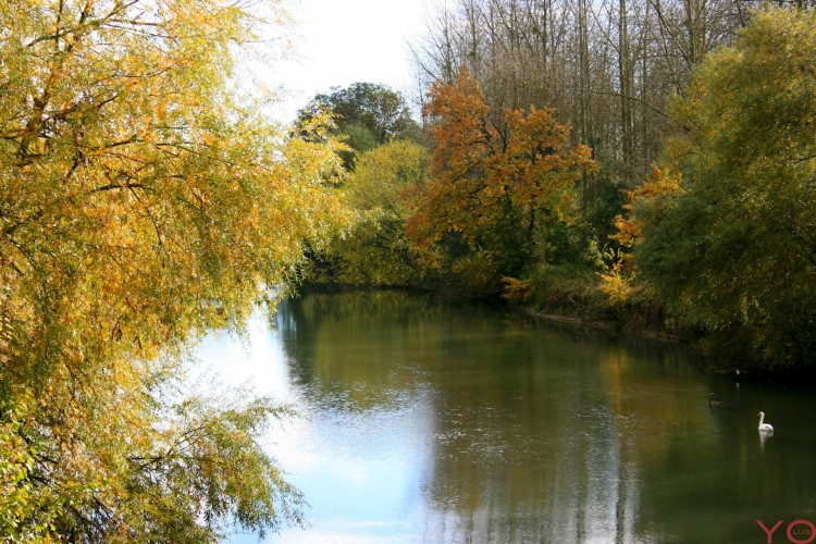 Fonds d'écran Nature Fleuves - Rivières - Torrents Rivière en automne