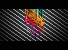 Wallpapers Digital Art Zebre
