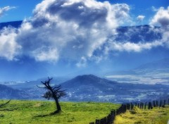 Wallpapers Trips : Africa Beautiful day...