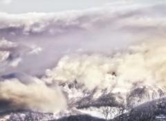 Nature Pâleur d'hiver