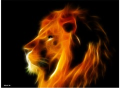 Animaux LION FRACTAL