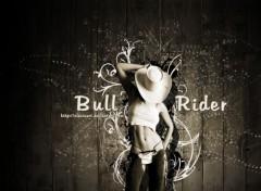 Art - Numérique Bull Rider