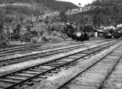Various transports Railroad to the jungle