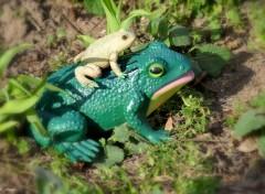 Humour Reproduction de Frogs
