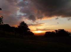 Nature Auckland's sunset