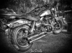 Motorbikes Moto