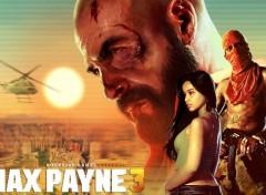 Video Games max payne 3