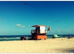 Nature Voyage Miami