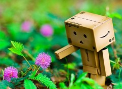 Objects Danbo powa !