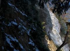 Nature falaise seino-marine enneigée