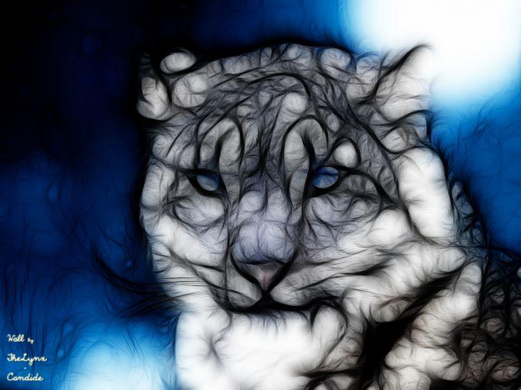 Wallpapers Digital Art Animals Panthère des Neiges - Fracts