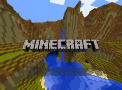 Video Games play minecraft