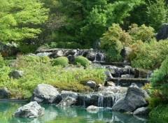 Nature Jardin Botanique de Montréal