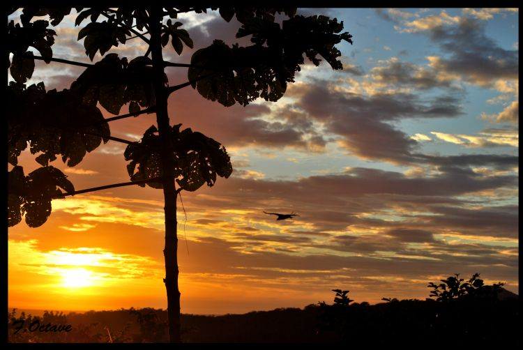 Fonds d'écran Nature Couchers et levers de Soleil Couché de soleil au Costa Rica