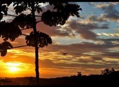 Nature Couché de soleil au Costa Rica