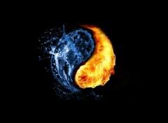 Art - Numérique 2 Elements