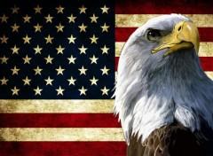 Voyages : Amérique du nord American Flag