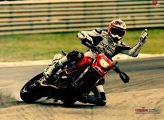 Motorbikes ducati
