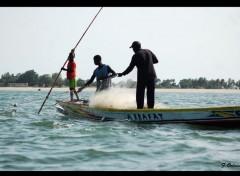 Voyages : Afrique Peche au filet :)