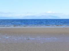 Nature Ayr Beach