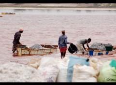 Voyages : Afrique Lac Rose