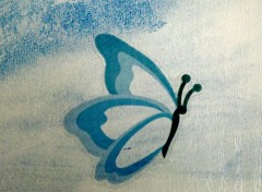 Objects papillon bleu