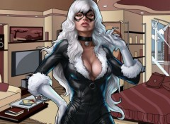 Comics et BDs Black-Cat.