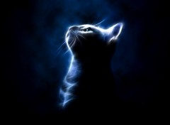 Digital Art Cat in the light