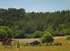 Nature la petite maison dans la prairie