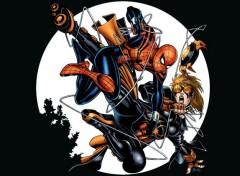 Comics et BDs Spider-Man et Girl.
