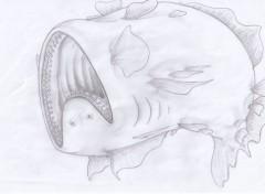 Art - Crayon Dessins
