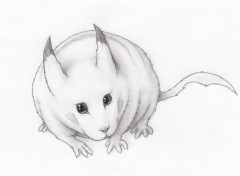 Art - Pencil Pikachu