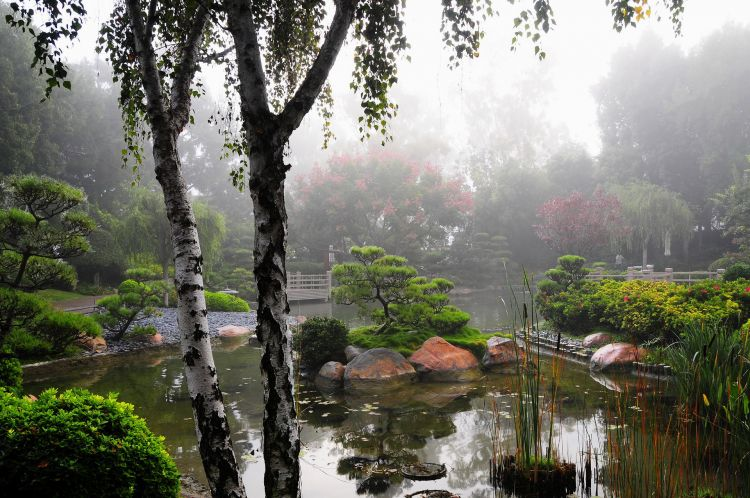 Fonds d 39 cran nature fonds d 39 cran parcs jardins jardin asiatique par yushy - Jardin asiatique ...