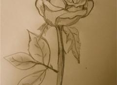 Art - Crayon Rosa
