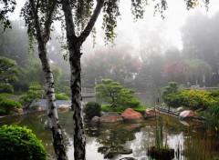 Nature Jardin Asiatique